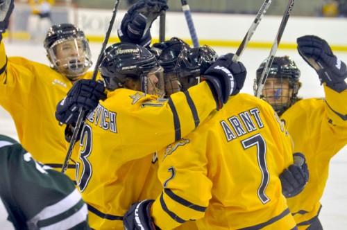 Quinnipiac 2, Dartmouth 1Quinnipiac players celebrate Ben Arnt's first-period goal in Saturday's game vs. Dartmouth.