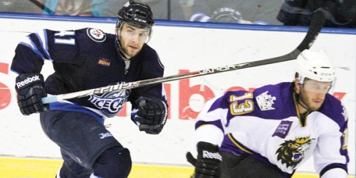 Former Quinnipiac forward Scott Zurevinski skates with his new team in the American Hockey League, the St. John's Ice Caps on March 17. Zurevinski has played six games so far with the Ice Caps and has five shots on goal and 11 penalty minutes.