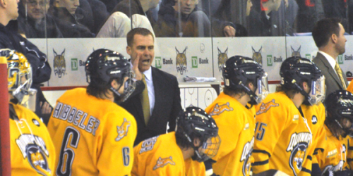 UPDATE: Report: Pecknold to stay at Quinnipiac