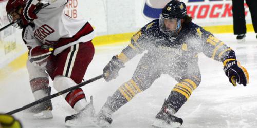 Quinnipiac men's ice hockey ties Harvard