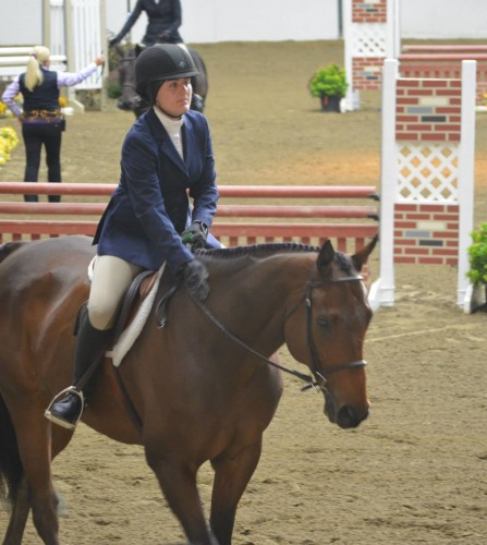 Hold+on+to+your+horses%3A+University+considers+equestrian+center