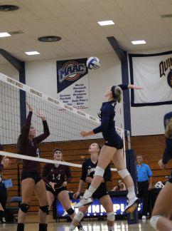 Women's volleyball dominates Fairleigh Dickinson