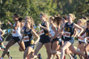 Quinnipiac men's and women's cross country take to the MAAC Championships