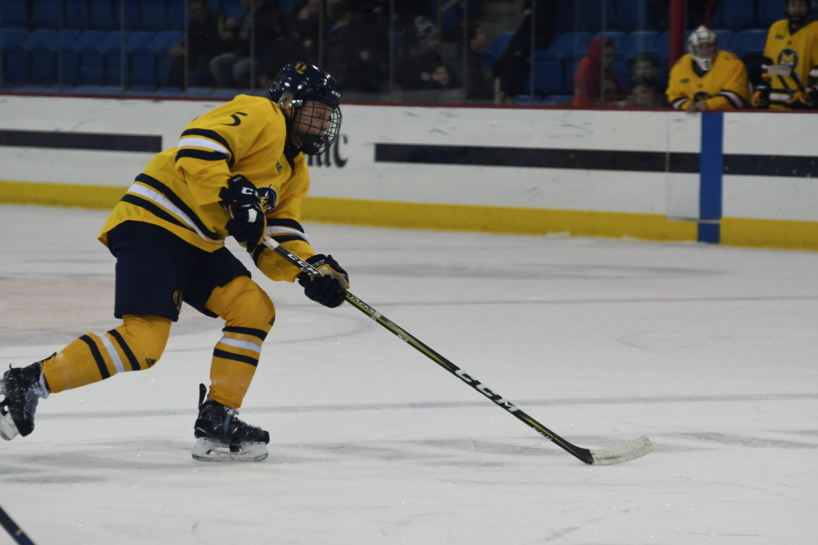 Quinnipiac women's ice hockey swept by New Hampshire