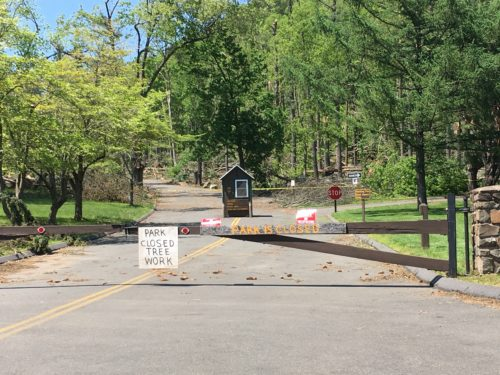 Sleeping Giant closes park after tornado destruction, including an abundance of trees down or broken.