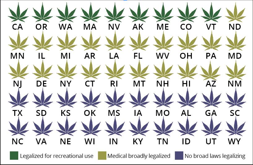 A cannabis conversation