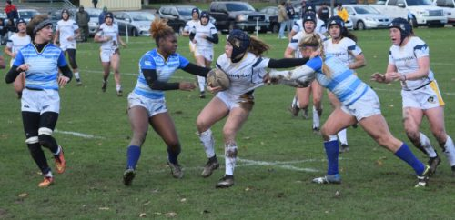 Quinnipiac rugby defeats Notre Dame College 46-5 on Senior Day, moves onto NIRA semifinals