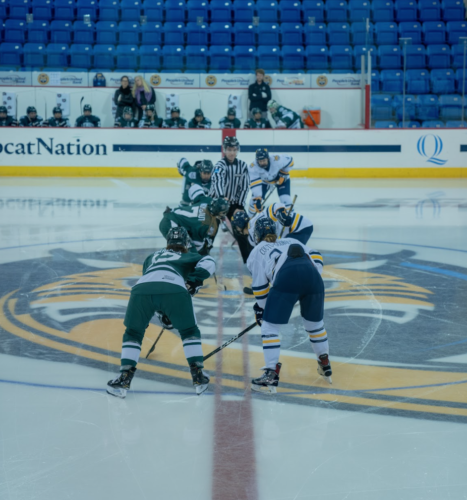 Quinnipiac women's ice hockey falls to Dartmouth in overtime