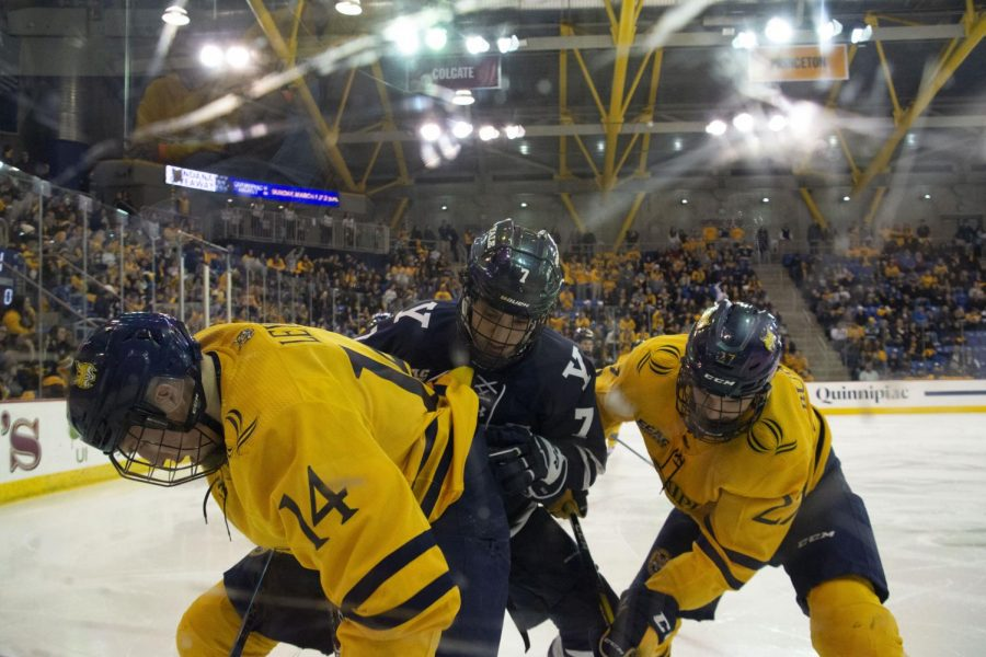 Quinnipiac and Yale battle for the puck along the boards.