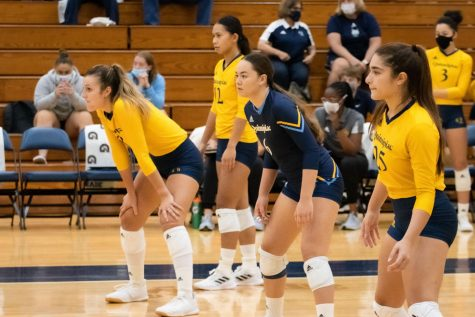Junior outside hitter Aryanah Diaz had the eighth-most triple-doubles in the NCAA last year with three. Photo from
