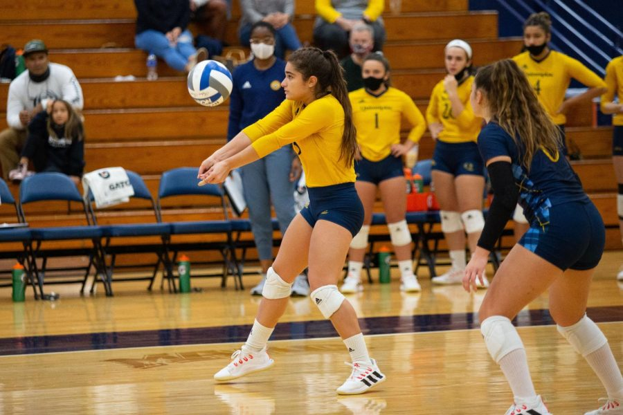 Junior outside hitter Aryanah Diaz has been the Bobcats most versatile player, as shes second on the team in kills (181), third in assists (128) and second in aces (19). Photo from